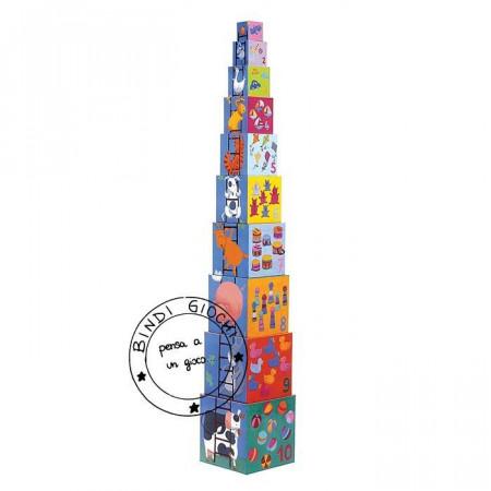 Cubi di Cartone Djeco Rigolos